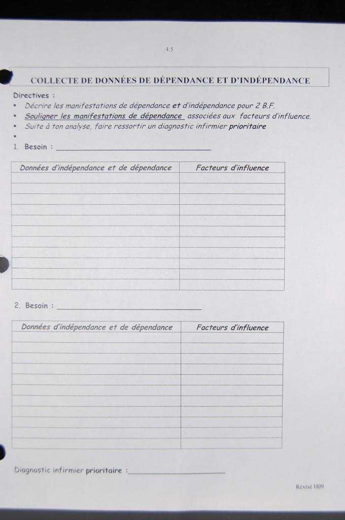 la collecte de données basée sur les 14 besoin de V.Henderson ....pfffttt.....